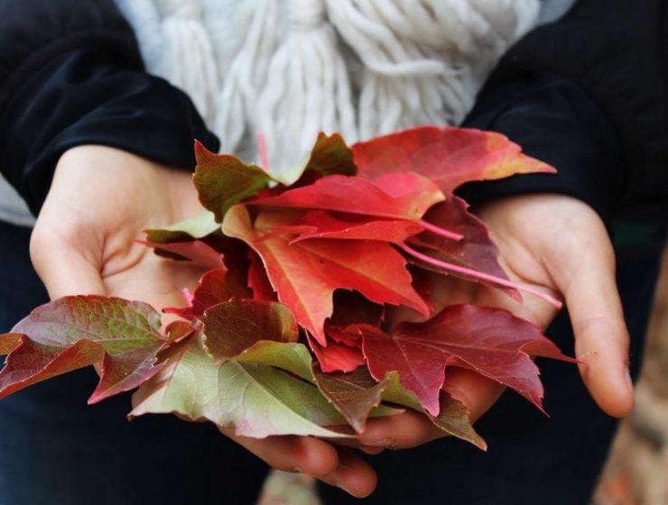 jesienna pielęgnacja skóry i włosów